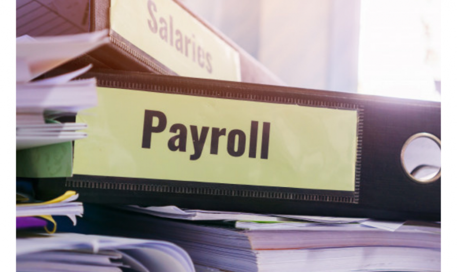 Reasons why companies are opting for cloud based HR & payroll management software